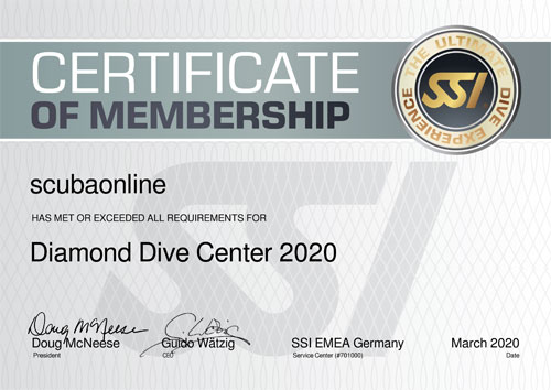 SSi Diamond Dive Center 2020